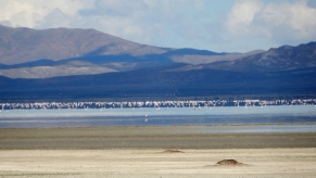 DSCN5448_Los POZUELOS laguna et flamants CS NIKONCoolpix2 colo recadre reduc2000